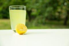Natural Lemonade in the garden stock image
