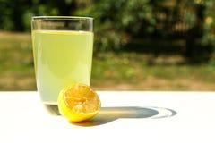 Natural Lemonade in the garden Stock Photography