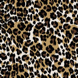 Natural leopard skin. Seamless half drop repeat, of a an animal skin leopard stock illustration