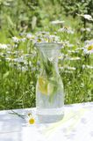 Natural light.Glass bottle of healthy water with mint and pieces of lemon stock photos