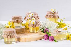 Natural light liquid honey. Honey in glass jars and dipper with wild flowers. Royalty Free Stock Photos