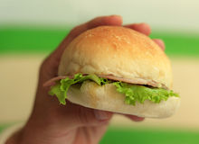 Natural lighting photo of a hand holding sandwich Royalty Free Stock Photo