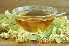 Natural linden tea Stock Image