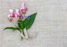 Natural linen texture with small bouquet of Indian balsam flowers. Impatiens glandulifera plant. Natural fabric rough background. Natural texture with small royalty free stock photo