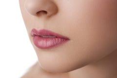 Natural lips close up royalty free stock image