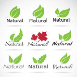 Natural logo design vector template Royalty Free Stock Image