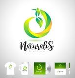 Natural Logo, Green Logo, Leaf Logo Design Vector Royalty Free Stock Photos