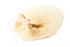 Natural Loofah Sponge. Natural Loofah Sponge Isolated On White Stock Images