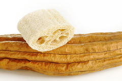 Natural loofah sponge Stock Images