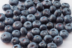 Natural looking blueberries. Stock Image