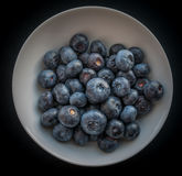 Natural looking blueberries. Stock Photos