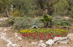 Natural Looking Flower Garden with Rock Accents royalty free stock photo