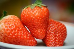 Natural looking fresh red strawberry. Stock Photo