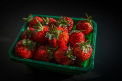 Natural looking strawberries. Stock Image