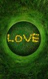 Natural Love Royalty Free Stock Image