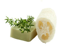 Natural luff sponge, thyme aromatic soap, isolated Stock Photo