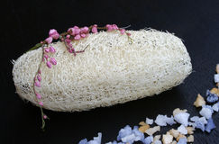 Natural Luffa Sponge Royalty Free Stock Image