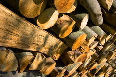 Natural lumber. Collection in sunlight Royalty Free Stock Photos