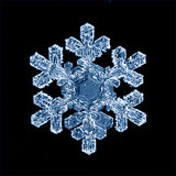 Natural macro de los cristales de hielo del copo de nieve actual Fotos de archivo