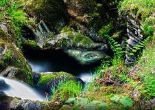 Natural magical fairytale whirlpool. Magical secret fairytale water whirlpool Stock Image
