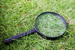 Natural magnifying glass Royalty Free Stock Image