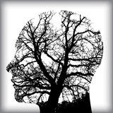 Natural Man in the Tree for Royalty Free Stock Image
