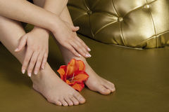 Natural manicure and pedicure with flower. Seating on a golden couch Royalty Free Stock Photography