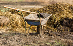 Natural manure. Carts with natural cow manure standing on farm Royalty Free Stock Photography