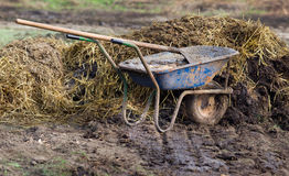 Natural manure Stock Photography