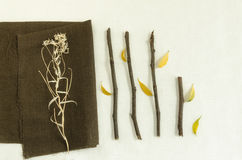 Natural materials: twigs and dry leaves on linen napkin Stock Image