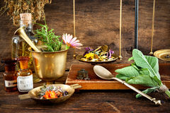Natural medicine royalty free stock photos