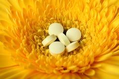 Natural medicine conception Stock Photography