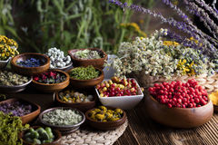 Natural medicine. Fresh medical herbs on wooden table royalty free stock photography