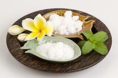 Natural medicine for inhalation (mint, borneol and camphor). Stock Images