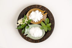 Natural medicine for inhalation (mint, borneol and camphor). Royalty Free Stock Photography