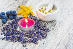 Natural medicine, natural cosmetics Royalty Free Stock Image