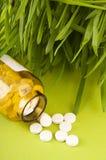 natural medicine pills Royalty Free Stock Photos
