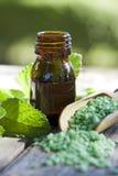 Natural medicine Royalty Free Stock Image
