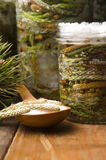 Natural medicine - syrup made of pine sprouts Royalty Free Stock Images