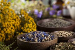 Herbs, berries and flowers with mortar, on wooden table background stock photography