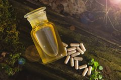 Natural medicines - extract from herbs stock photography