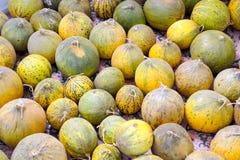 Natural melons Royalty Free Stock Photos