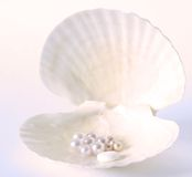 Natural minerals pills, natural care of health. Mineral pill on a shell with pearls, blue and pink tone (toned) Minerals pills received from pearls,natural care royalty free stock image