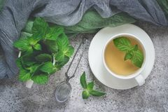 Natural mint tea and fresh mint leaves on a gray background.  stock photography