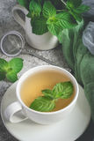 Natural mint tea and fresh mint leaves on a gray background.  stock images