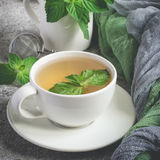 Natural mint tea and fresh mint leaves on a gray background.  royalty free stock images
