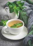 Natural mint tea and fresh mint leaves on a gray background.  stock image