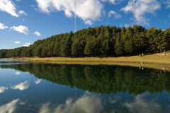 Natural mirrored landscape Stock Photo
