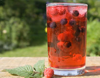 Natural mixed berry juice Royalty Free Stock Photos