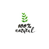 100% natural. Modern brush calligraphy. Handwritten ink lettering. 100% natural. Modern brush calligraphy. Hand drawn Eco lettering for restaurant, cafe menu Stock Photo